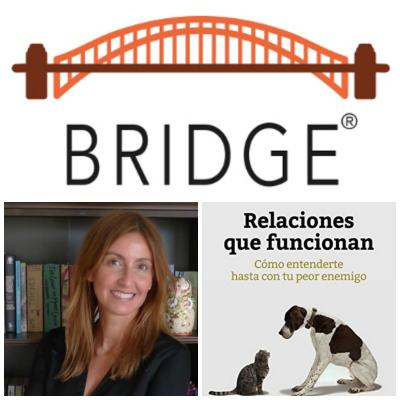 Worshop Modelo Bridge®