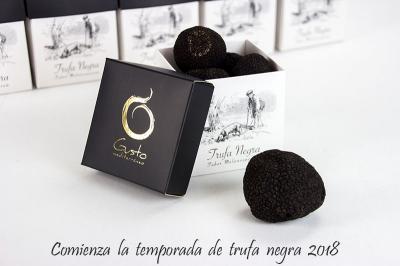 Trufa negra de Teruel